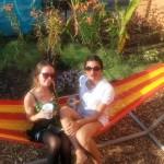 PHS Pop Up Garden
