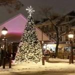 South Street Headhouse District Tree Lighting