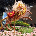 Philadelphia Flower Show - Courtesy of PHS : Pennsylvania Horticultural Society